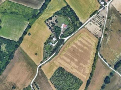 Terreno agricolo con capanno agricolo di 65 mq
